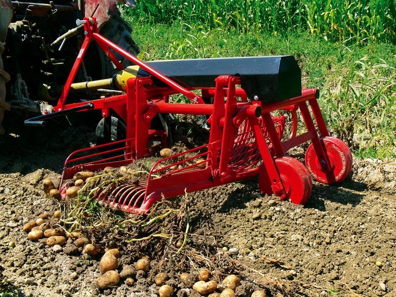 Kopaczka do ziemniaków będzie jednorzędowa lub dwurzędowa
