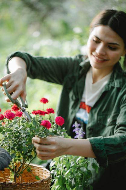 Popularne materiały używane do produkcji nowoczesnych wazonów